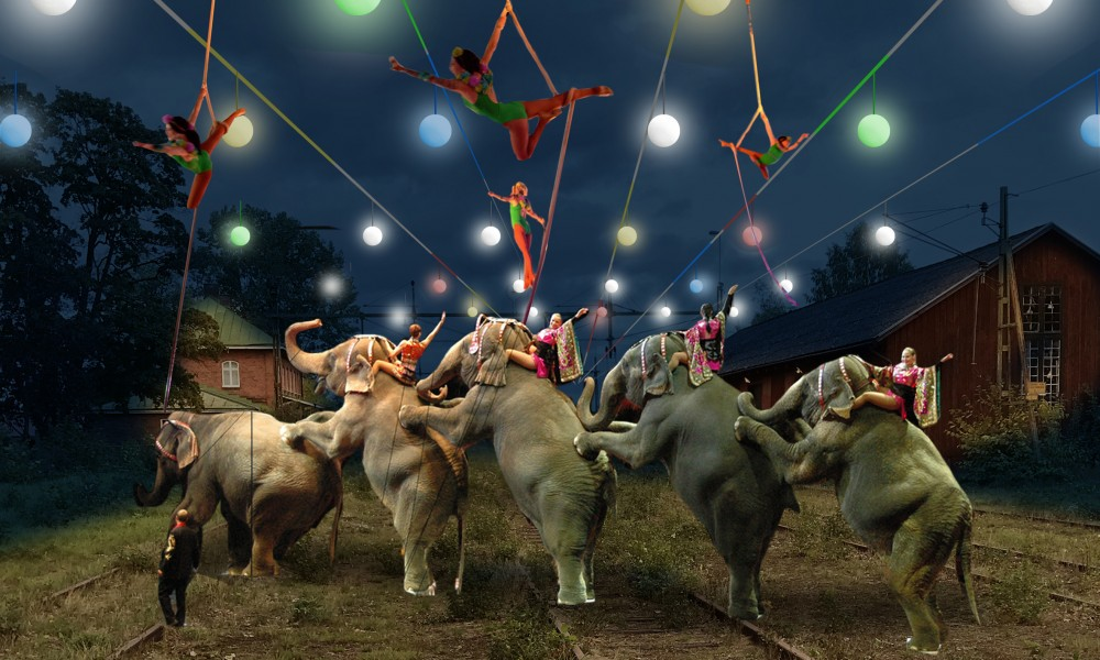 Tibro circus